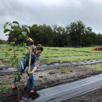 128715 После развода: Дженнифер Гарнер вплотную занялась фермерством