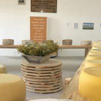 132577 Турция приглашает посетителей в «Музей сыра»