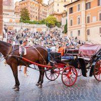 135253 В Риме запрещают конные повозки «боттичелле»