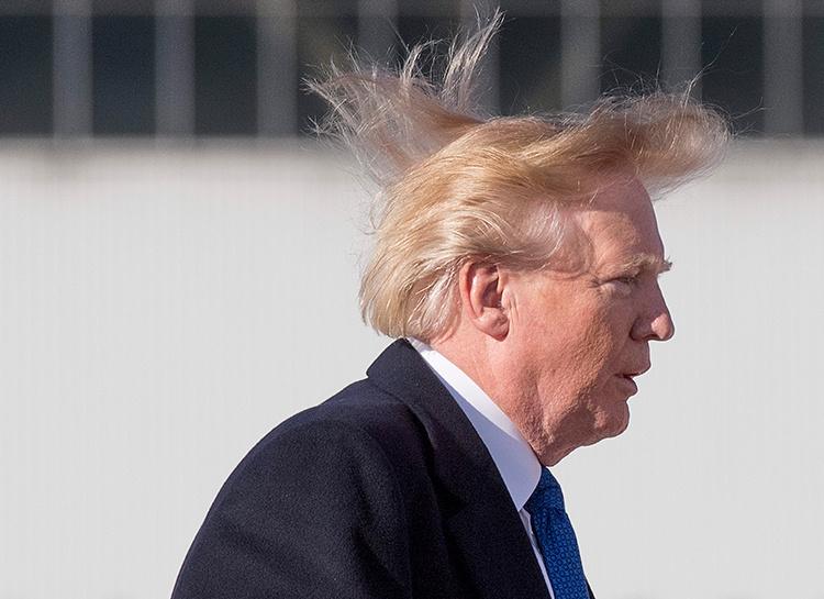 136502 Все не так плохо: Дональд Трамп ответил критикам о состоянии своих волос