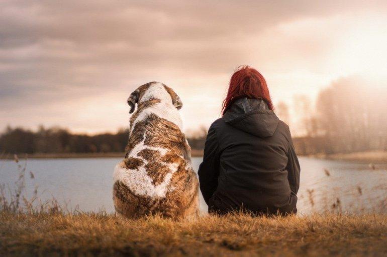 144824 Опровергнут миф о том, что собачий год равен 7 человеческим