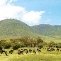 163983 Must see Танзании: 5 причин улететь на другой конец света