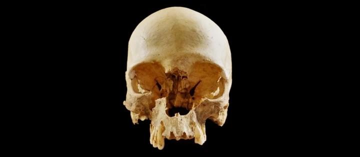 166829 Загадка одинокого черепа в Болонье наконец раскрыта
